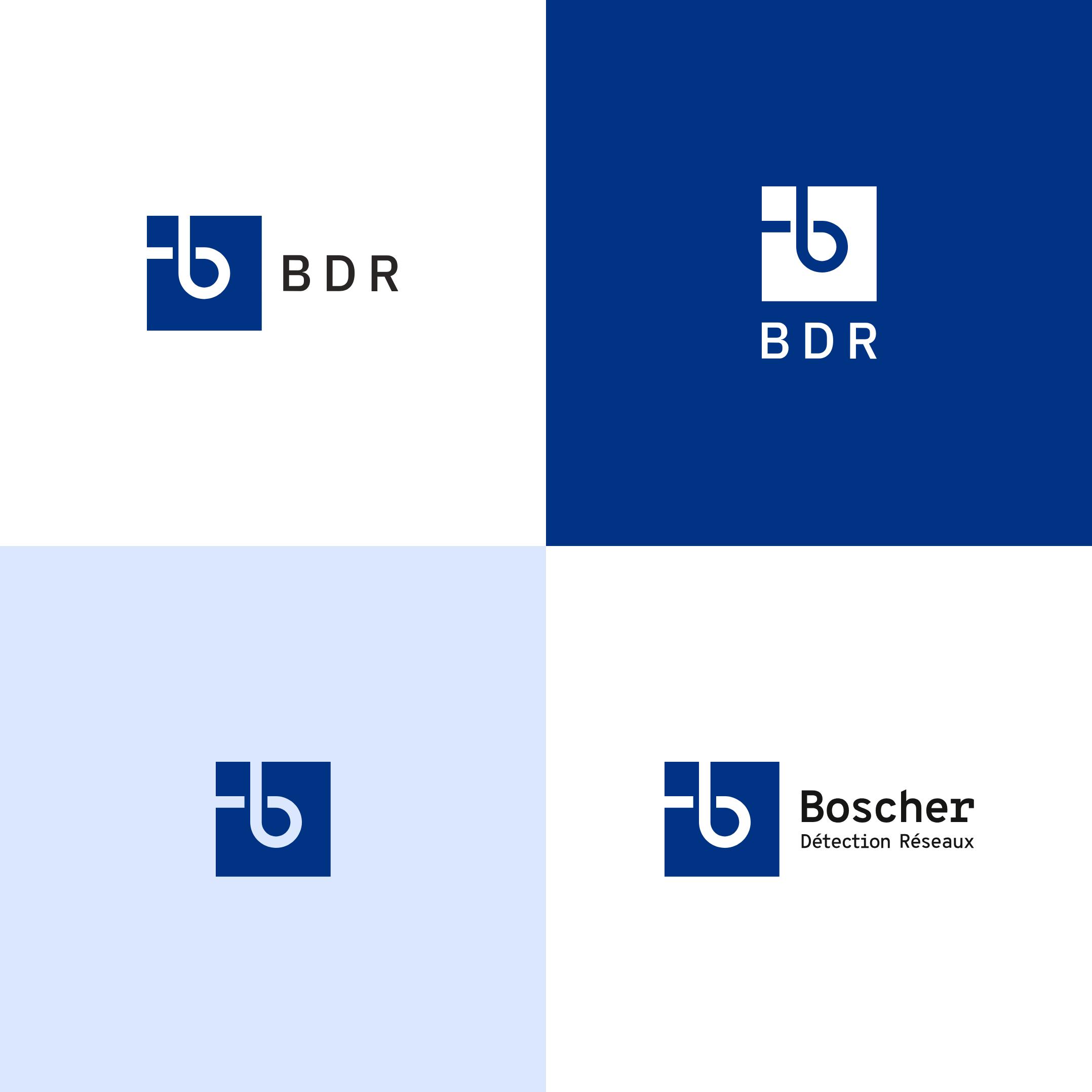 Alternatives de logos pour Boscher Détection Réseaux